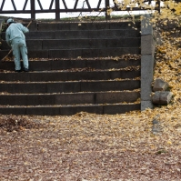 Autumn clean up - Kyoto.