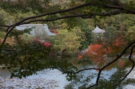 Ryoanji - Kyoyochi Pond 3