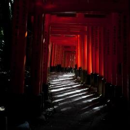 Fushimi Inari - pathway to tranquility (IMG_7865)