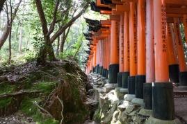 Fushimi Inari - cutting through the mountain (IMG_7768)