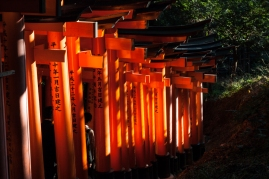 Fushimi Inari - the track down (pic 2) (IMG_7984)