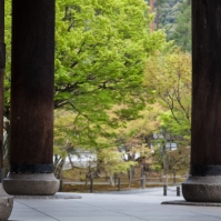 Sanmon Gate - passing through pic 3