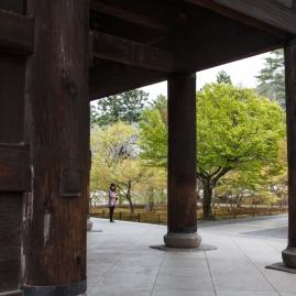 Sanmon Gate - pause pic 1