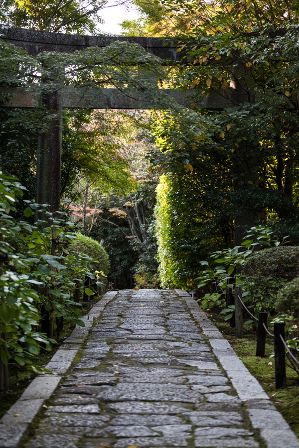 Konchi-in Temple - Torii over path