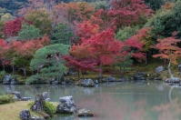 Tenryu-ji Temple - Sogen-chi Pond in Autumn
