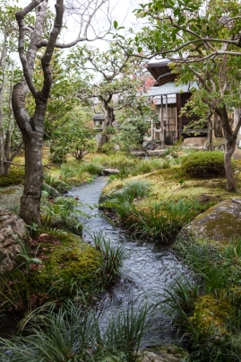 Tenryu-ji Temple - meandering stream