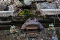 Tenryu-ji Temple - lucky frogs
