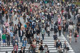 Shibuya Crossing - View from Starbucks