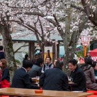 After work hanami - pic 1