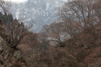 Snow monkey country - pic 2