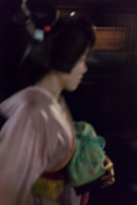 Pink Geiko rushing by