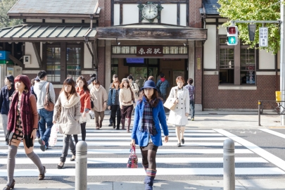 Harajuku Station Crossing - pic 1