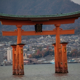 Floating Torii - pic 2