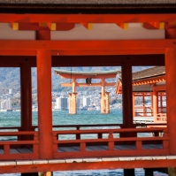 Floating Torii - pic 4