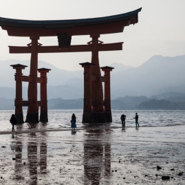 Floating Torii at low tide - pic 1