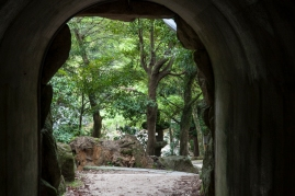 Mt Misen walk - pic 1