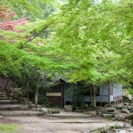 Mt Misen walk - pic 2
