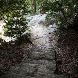Mt Misen walk - pic 4