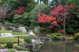 Gardens at Taizo-in