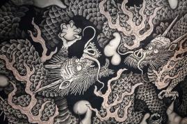 Dragons - pic 2