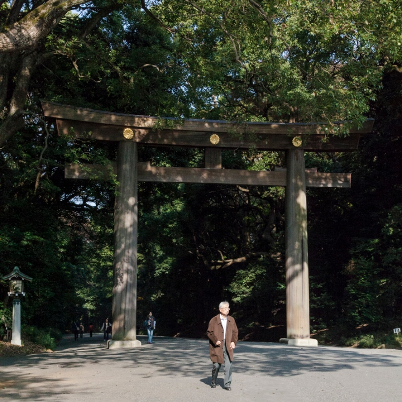 Torii at entrance - pic 1