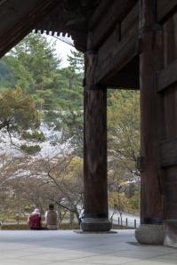 Sakura in Kyoto - pic 8