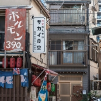 Mukojima streets - pic 3