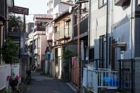 Mukojima streets - pic 4