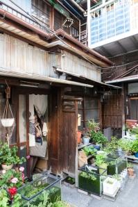 Mukojima streets - pic 5