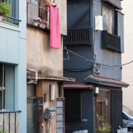 Mukojima streets - pic 6