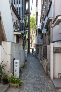 Cobbled Streets - pic 3