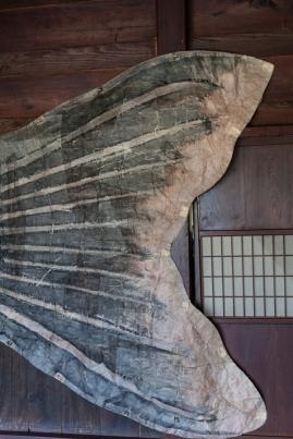 Tail of Kite at Hida No Sato