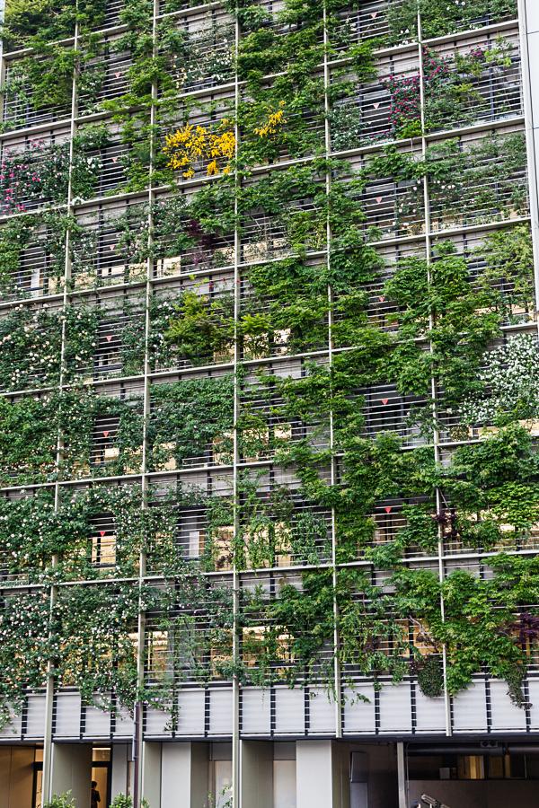 62.15 Vertical Garden