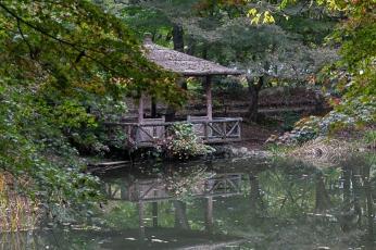 Kyoto Garden - pic 2