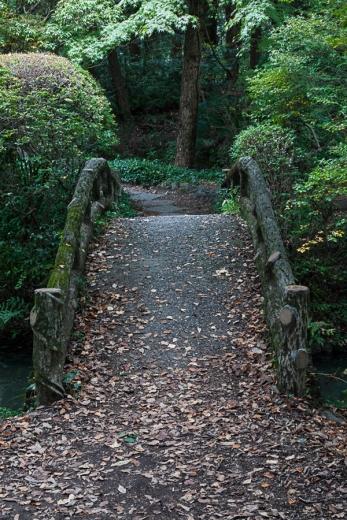 Kyoto Garden - pic 4