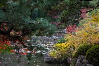 Kyoto Garden - pic 8