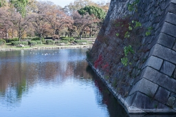 Moat Wall - pic 1
