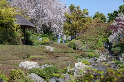 Taizo-in Japanese Pond Garden - pic 2