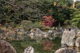 Nijo Castle - pic 9
