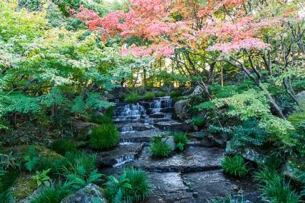 Koko-en Gardens - pic 2