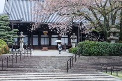 Moving through Otani Mausoleum