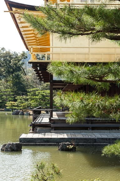 The Golden Pavilion - pic 3