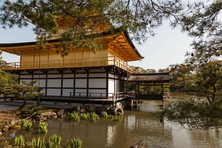 The Golden Pavilion - pic 4