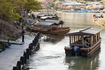 River Boat - pic 1