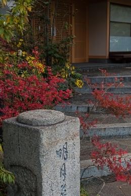 Arashiyama residence - pic 2