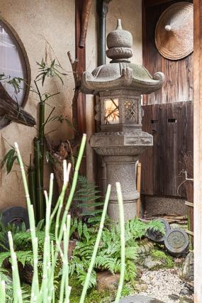 A garden corner
