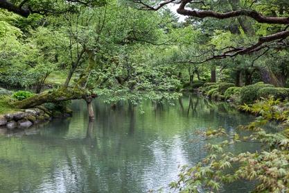 Hisagoike Pond - pic 1