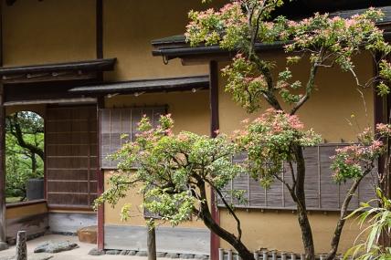 Yugao-tei (Gourd teahouse) - pic 2