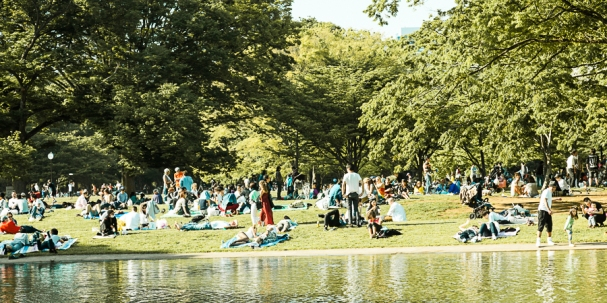 Picnickers - pic 1