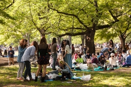 Picnickers - pic 2